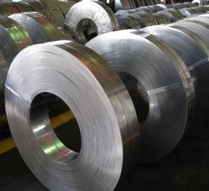 Galvanized Steel Coil & Strip